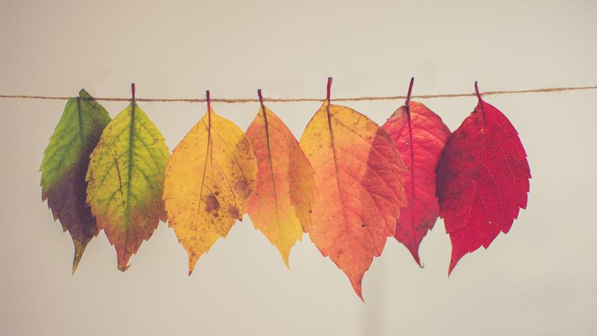 autunno-ho30_870x490