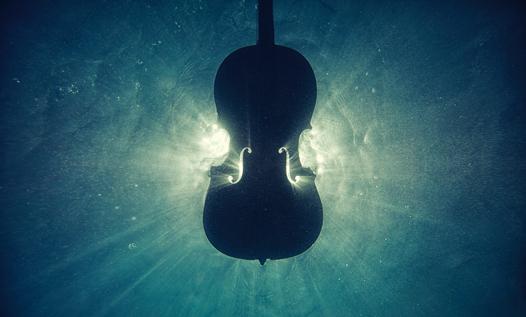 Il romanzo musicale